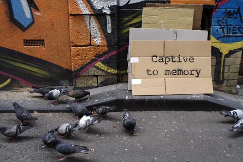 captive1.jpg
