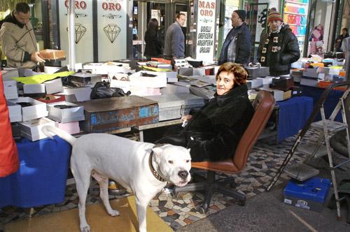 market-dog-2.jpg