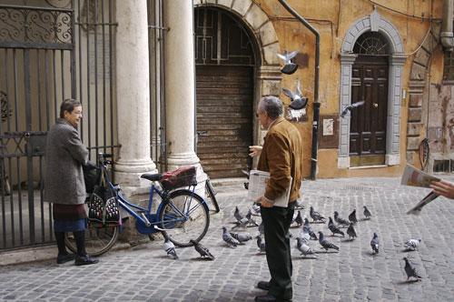 pigeon-31.jpg