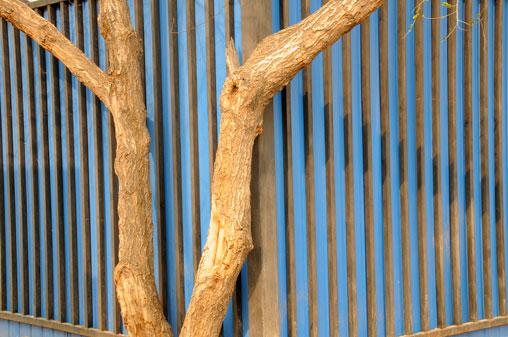 blue-fence1.jpg