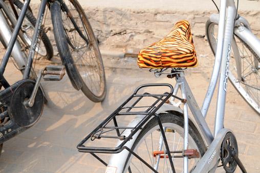 seat-bike.jpg